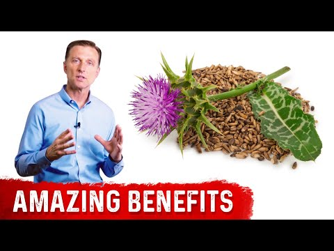 8 Benefits of Milk Thistle for the Liver
