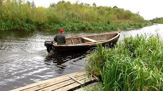 видео: (99) Золотая рыбка Липина Бора. Белое озеро. Вашкинский район.