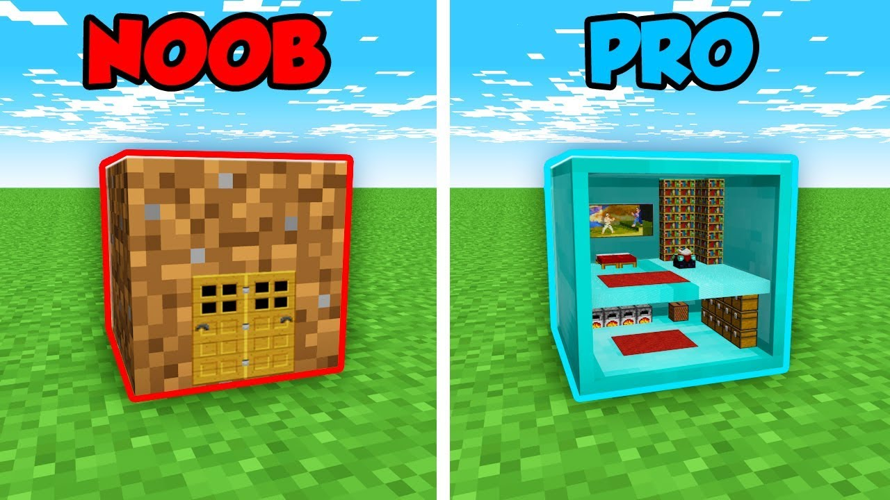 Minecraft Noob Vs Pro House Inside Blocks Challenge In Minecraft Animation Youtube