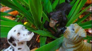 ВСТРЕЧА с ГОРИЛЛОЙ НОВЫЕ ПРИКЛЮЧЕНИЯ отважных собачек 2 СЕРИЯ Мультфильмы про животных