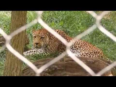 Baltimore Zoo 2014