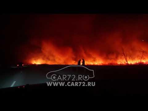 видео: Пожар на трассе около Тюмени