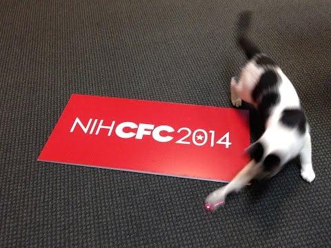 NIH CFC 2014 Director's Challenge - NCCAM