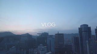 VLOG | 평범한 일상 브이로그 | 바베큐, 자취 식…