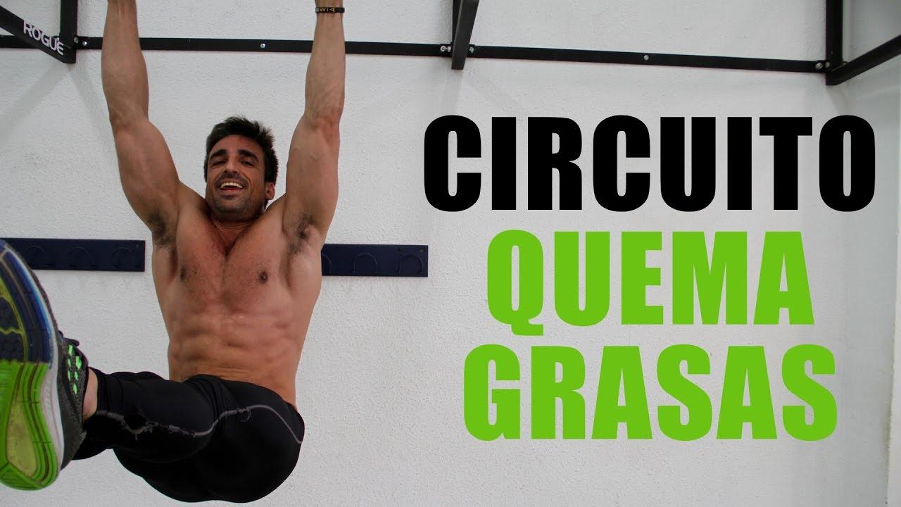Circuito Quema Grasa Gimnasio : Circuito quema grasas men s physique youtube