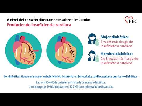 la poliuria en la diabetes mellitus es causada por la anatomía del cuestionario
