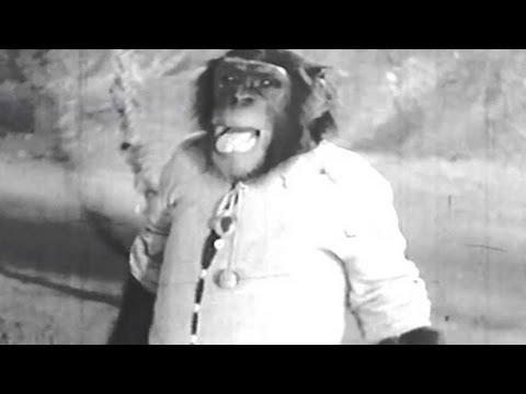 O Zalima Chala Kahan - Mohd Rafi - Zimbo Song