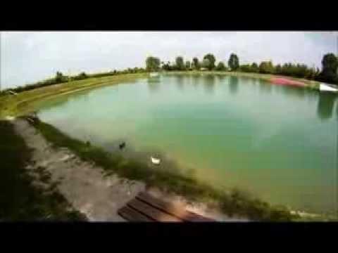 Singolo Pesce Gatto Preso