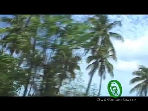 Things to Do in St. Lucia - Tours & Excursions (St. Lucia Best tours and transfer services Company)