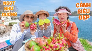 | 930 | GIVE YOUR MOM TO THE EXTERIOR GIRLS ON THE NORTH, TO THE SEA, TO EAT MANGO MANGO MANGA AND RED ROSE LONG BAR.