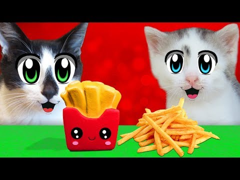 CHALLENGE SQUISHEES! CAT KID and CAT MURKA and Squishy Food VS REAL FOOD CHALLENGE! TOYS ANTISTRESS