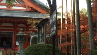 横川の秋(SONY HDR-XR500V+CX500V+Canon HV10)