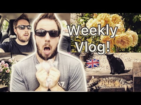 THE GREAT STINK  WEEK IN MY BRITISH LIFE   WEEKLY VLOG  - ROYAL REVIEWER