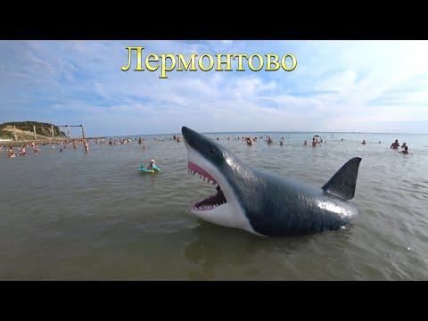 Вопрос: Почему акулам не нравятся воды Черного моря?