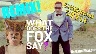 Repeat youtube video What Does The Fox Say? VS. Gangnam Style REMIX (What Does The Fox Say & Gangnam Style Mashup)