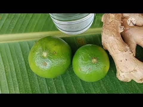 สูตรน้ำมะนาวดับกลิ่นปาก ได้ผลดี แต่มีข้อควรระวัง สมุนไพรดี ราคาถูก|วิถีไทยทีวี|ep.8