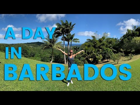 A Day in Barbados: Things to Do in Barbados
