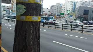 부산 금정구 롯데 마트 사라진 후 부산버스들(3)