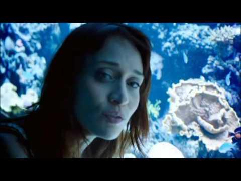Regret - Fiona Apple (Letra en Español)