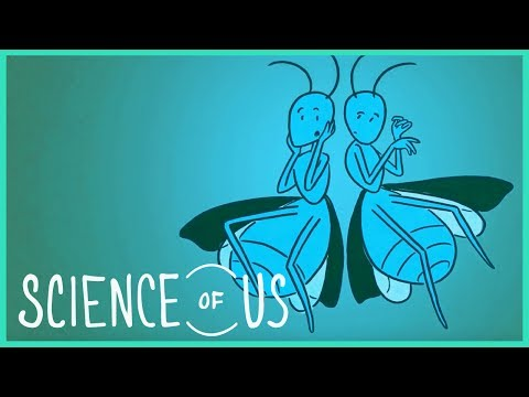 """Your Sex Drive Is Normal: """"The Science of Us,"""" Episode 24"""