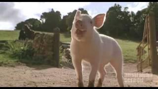 Babe The Gallant Pig -  La La La