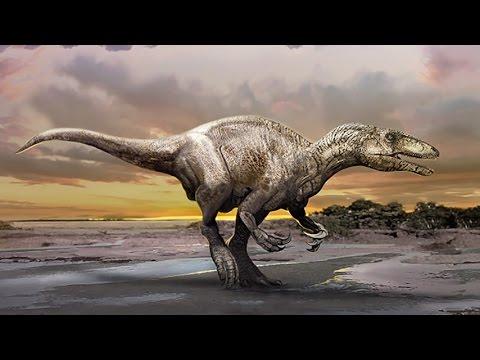 Murusraptor barrosaensis - new megaraptorid dinosaur