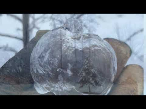 Icy rain creates 'ghost apples' in Kent County