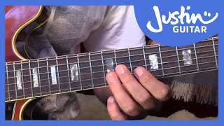 Blues Lick: B.B King Style Lick and BB Box Lesson (Guitar Lesson BL-506)