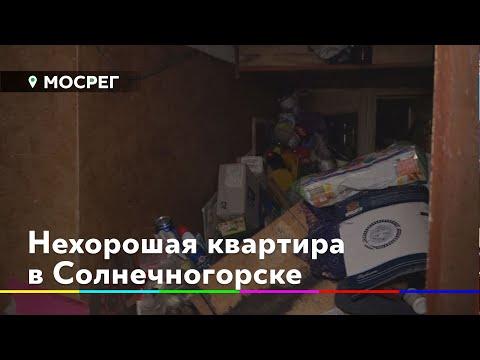 Жители дома в Солнечногорске пожаловались на соседку-грязнулю