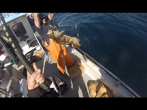 Lingcod Fishing in Big Sur, CA 11/15/15