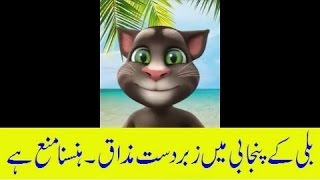 Download Funny Talking Tom- Punjabi, Urdu, Hindi 2017 part 1 FUNNY SONG MP3 song and Music Video