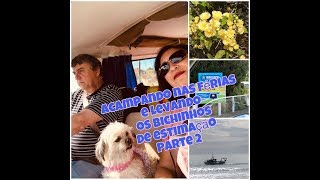 Acampando nas férias e levando os bichinhos de estimação  Parte 2
