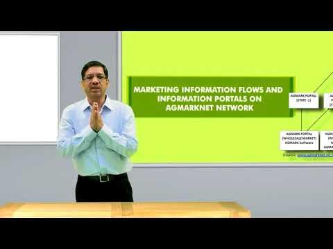 201 3 Market Information Services