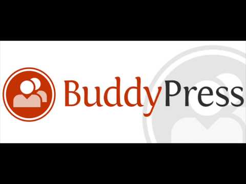 How to Use BuddyPress with WordPress | BuddyPress Private Messaging & Activity Streams Component