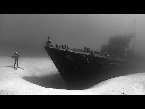 Free Diving Photography with Alastair Scarlett: Capture the Action with Martin Dorey