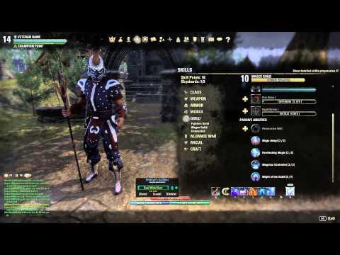 Image Result For Elder Scrolls Online Sorcerer Pve Build