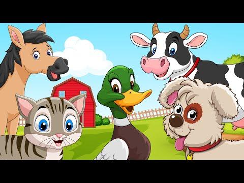 Zvukovi Životinja  - Kako kažu KUCA, MACA, KOKA, PATKA, KRAVA & KONJIĆ   Dečija Zona