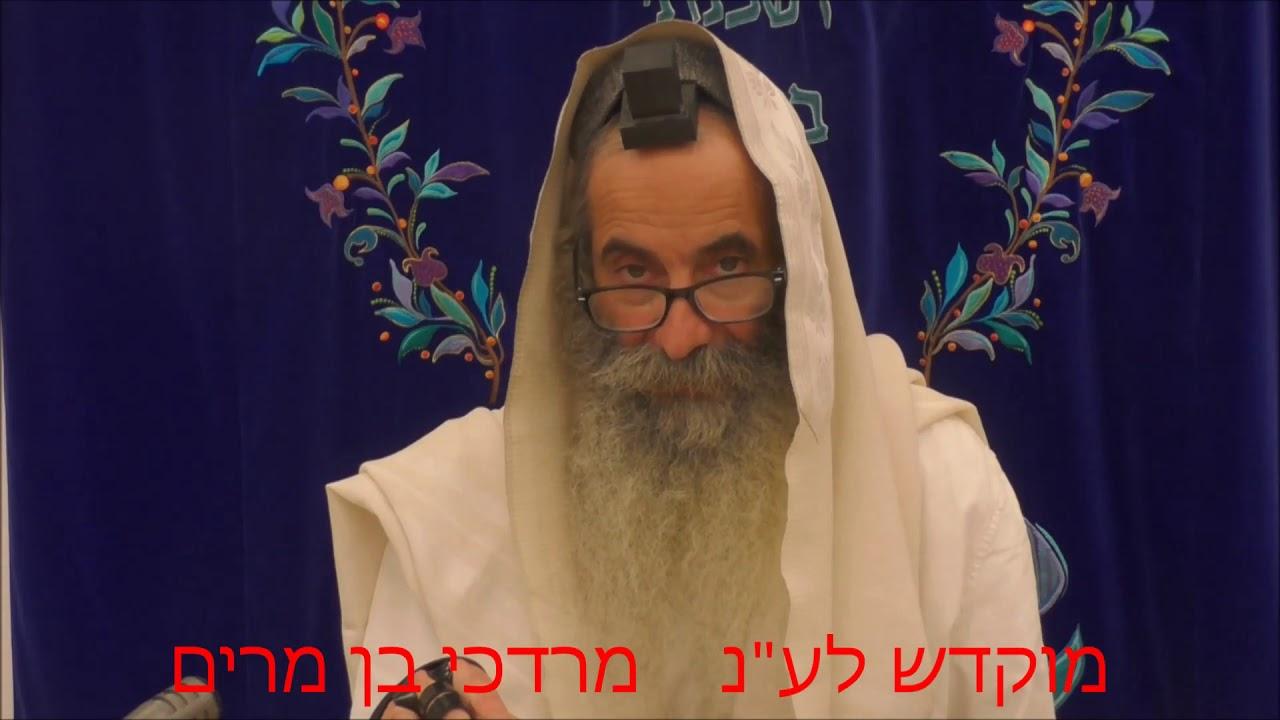 זוהר בקטנה פרשת כי תצא ליום ב' מפי רבי יעקב יוסף כהן