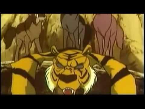 Jungle Book All Episodes