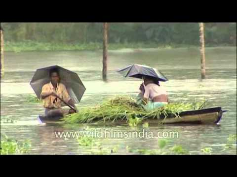 Boating in South Indian rains- Backwaters of Kerala