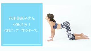 花田美恵子さんが教える!代謝のいい1日をスタートできる「牛のポーズ」 花田美恵子 検索動画 22