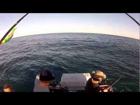 Depoe bay fishing charters doovi for Newport oregon fishing charters