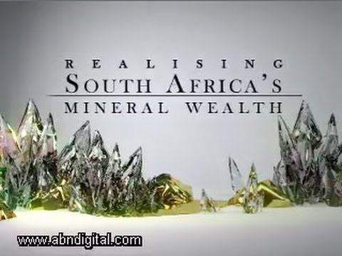 Realising South Africa's Mineral Wealth Panel Discussion - Part 1