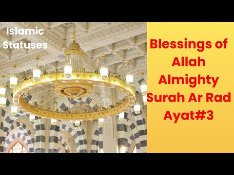 Blessings of Allah Almighty Status || Islamic Statuses