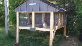 Canadian Rabbit Hutch - Part Two