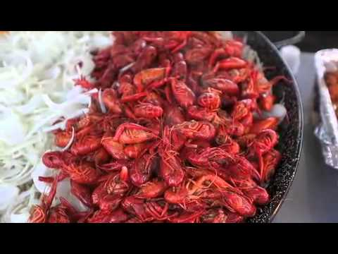 """""""What are you serving?"""" National Shrimp Fest, Gulf Shores, 10.9.15"""