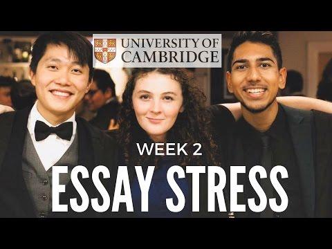 Видео Afrikaans essays for grade 10