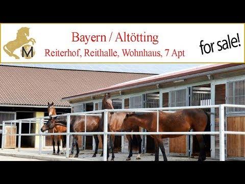 Reiterhof 90 km östl München, Altötting zu verkaufen