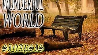 DJ Sinapsis - Wonderful World (Original mix)