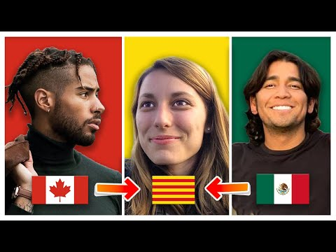 Catalan Language | Can Spanish and French speakers understand?